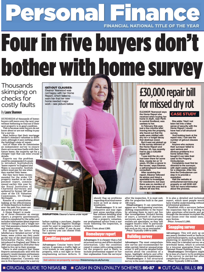 The Mail on Sunday press article on home surveys.